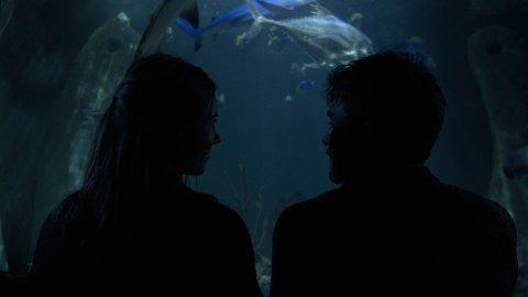 Spies - Sea Creature [Music Video]
